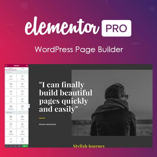 Elementor PRO WordPress