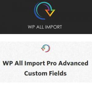 WP ALL IMPORT | DodatkiWordPressa
