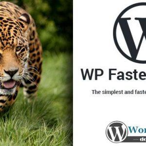 WP Fastest Cache Premium