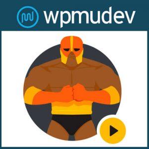 WPMU DEV Defender Pro