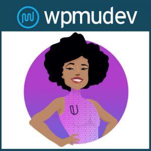 WPMU DEV Ultimate Branding Branda