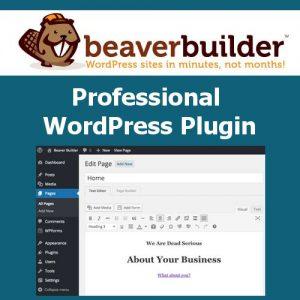 Beaver Builder Professional WordPress Plugin