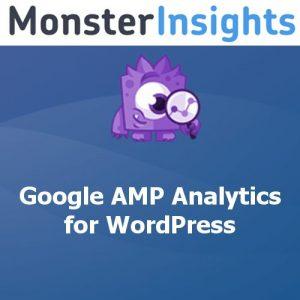 MonsterInsights – AMP Addon