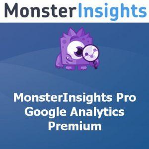 MonsterInsights Pro Google Analytics Premium