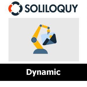 Soliloquy Dynamic Addon