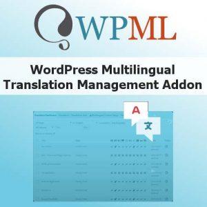 WordPress Multilingual Translation Management Addon